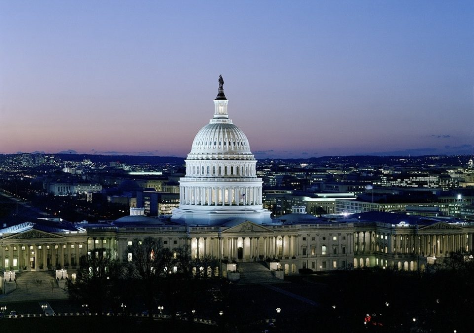 The US Capital in Washington DC at night